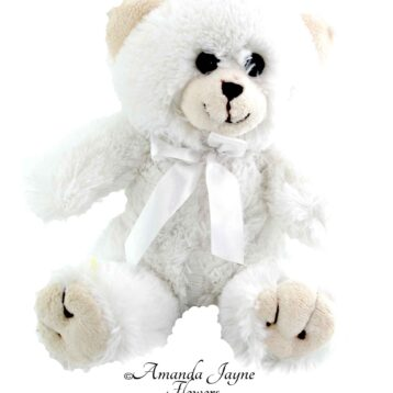 Little Ted Bear - White