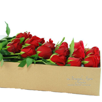 24 Long Stems Red Roses for Valentine's Day