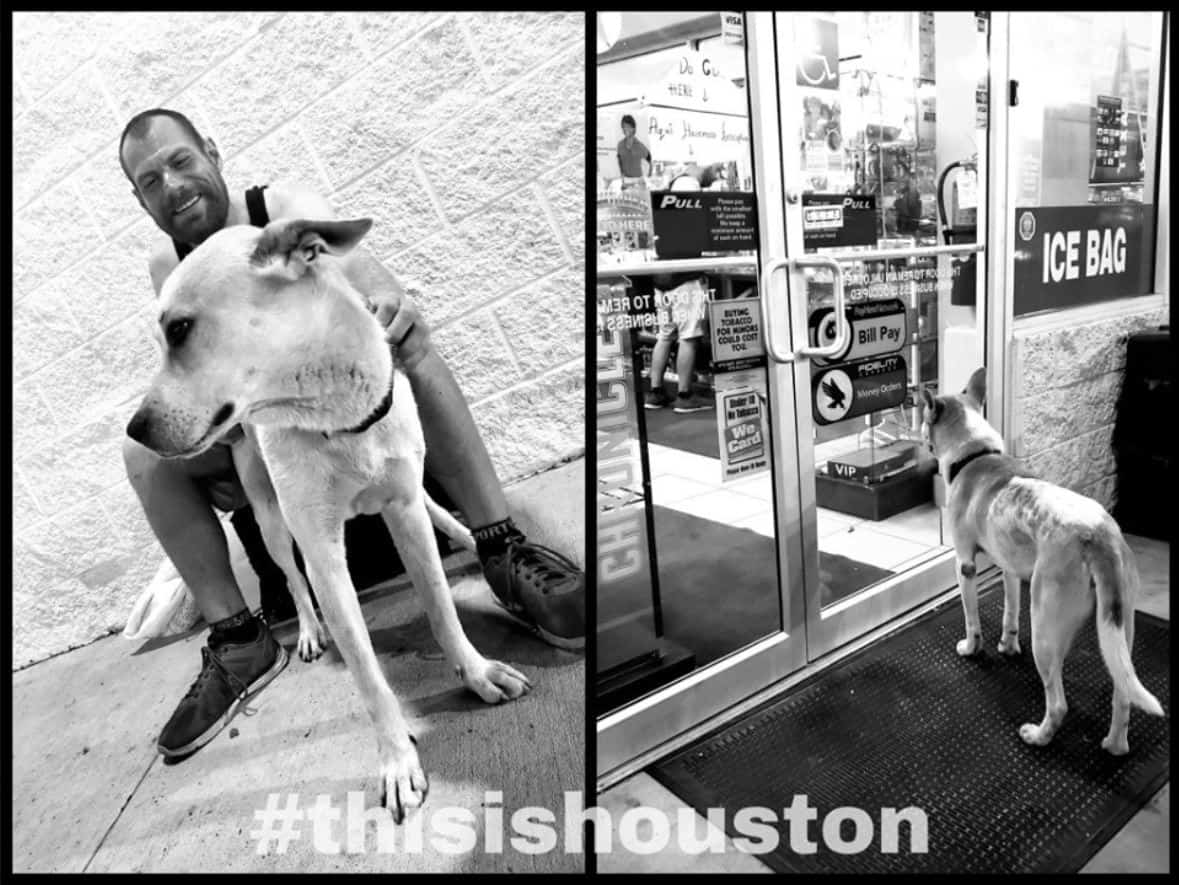 ThisIsHouston picture of homeless man and his dog