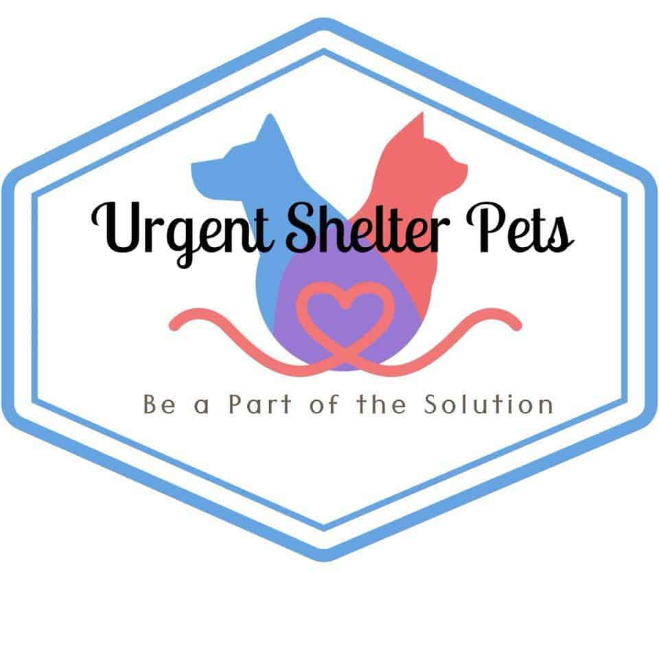 logo for facebook page Urgent Shelter Pets Houston