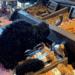 patsys pet market pet food and grooming