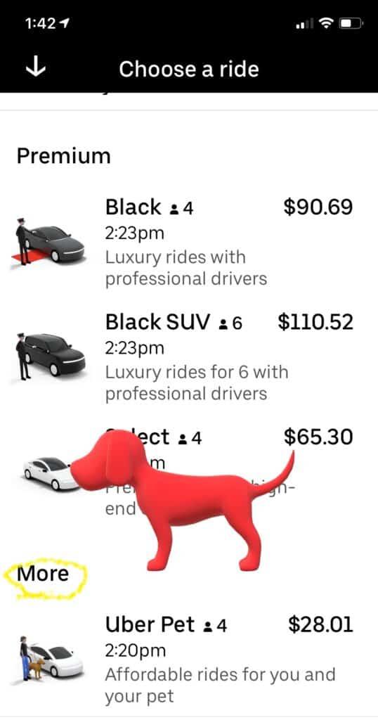 doggie uber pet uber service launch how to order uber pet