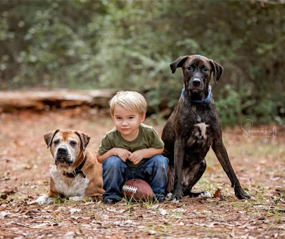 Shauna Kiely photography, houston photographer family and pet photographer.