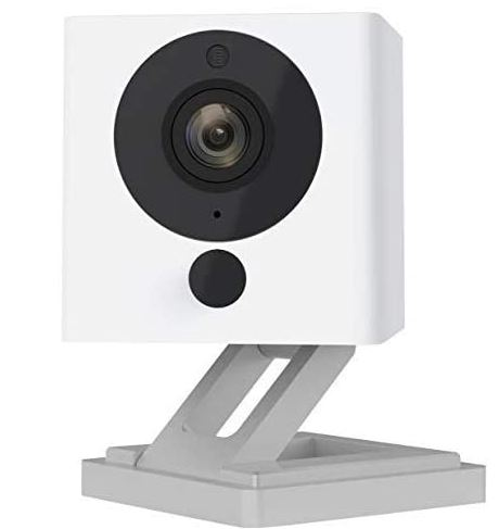 wyze camera is better than furbo and cheaper than furbo to watch your dogs. great dog gift.