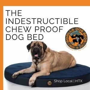 chew proof dog bed orthopedic dog bed made in Houston TX