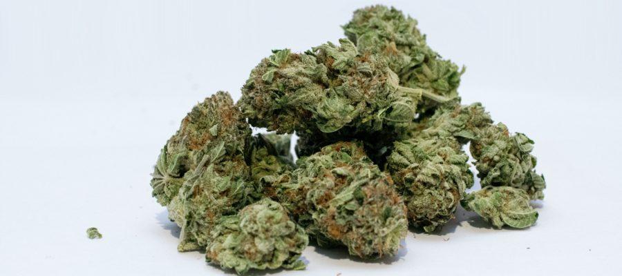 marijuana-2174302