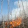 Day Prairie Fire