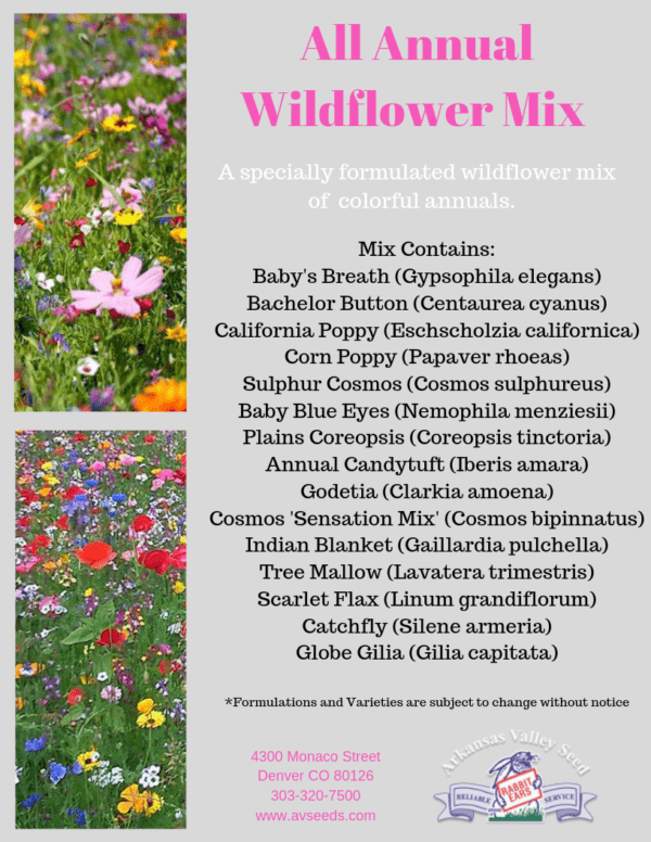 All Annual Wildflower Mix