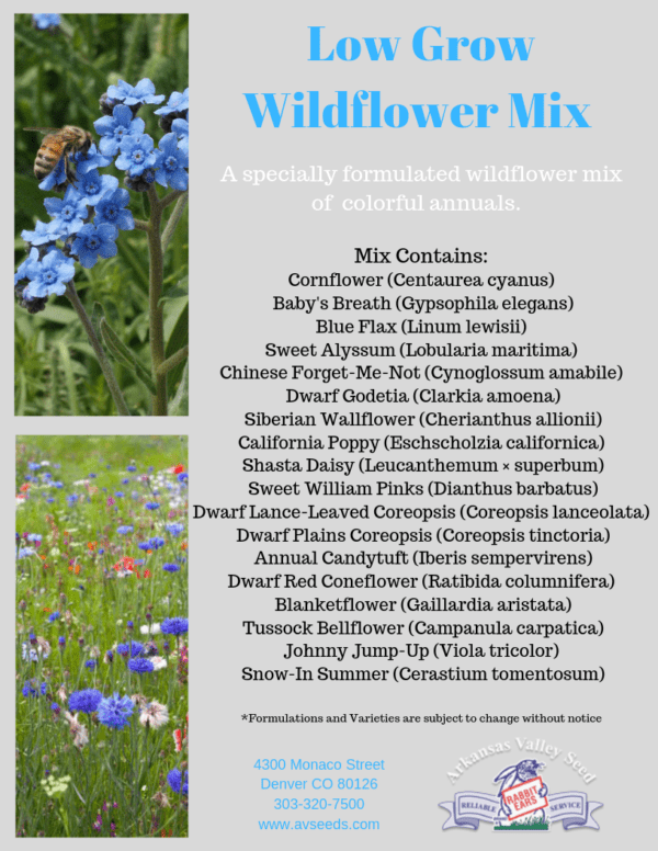 Low Grow Wildflower Mix