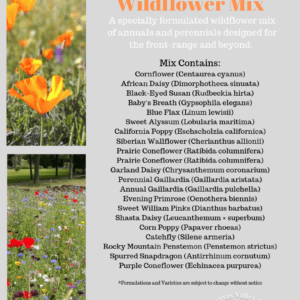 Rocky Mountain Wildflower Mix