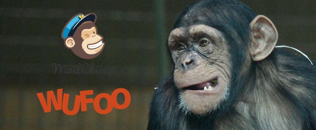 Wufoo Mailchimp Integration Problems?