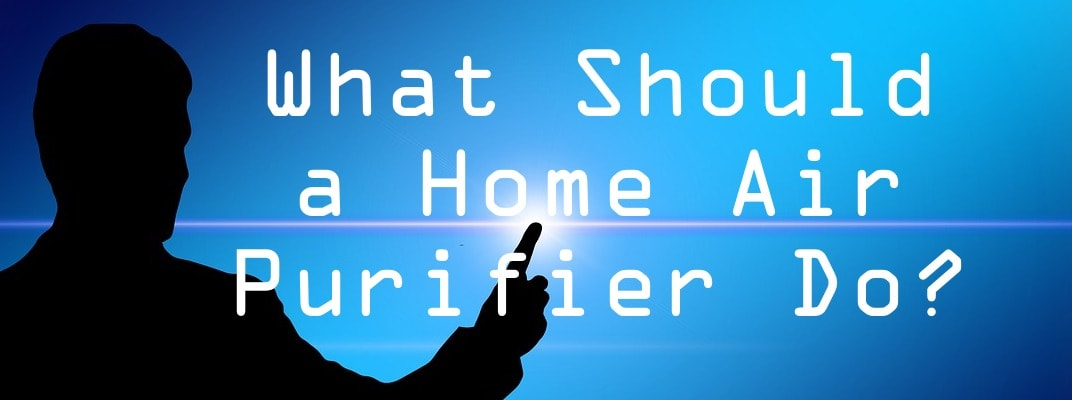 what should a home air purifier do