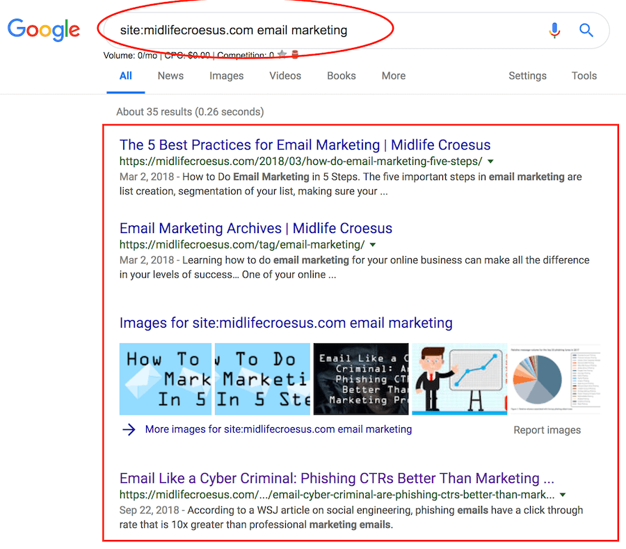 How to Search Within any Website Using Google example #2 email marketing