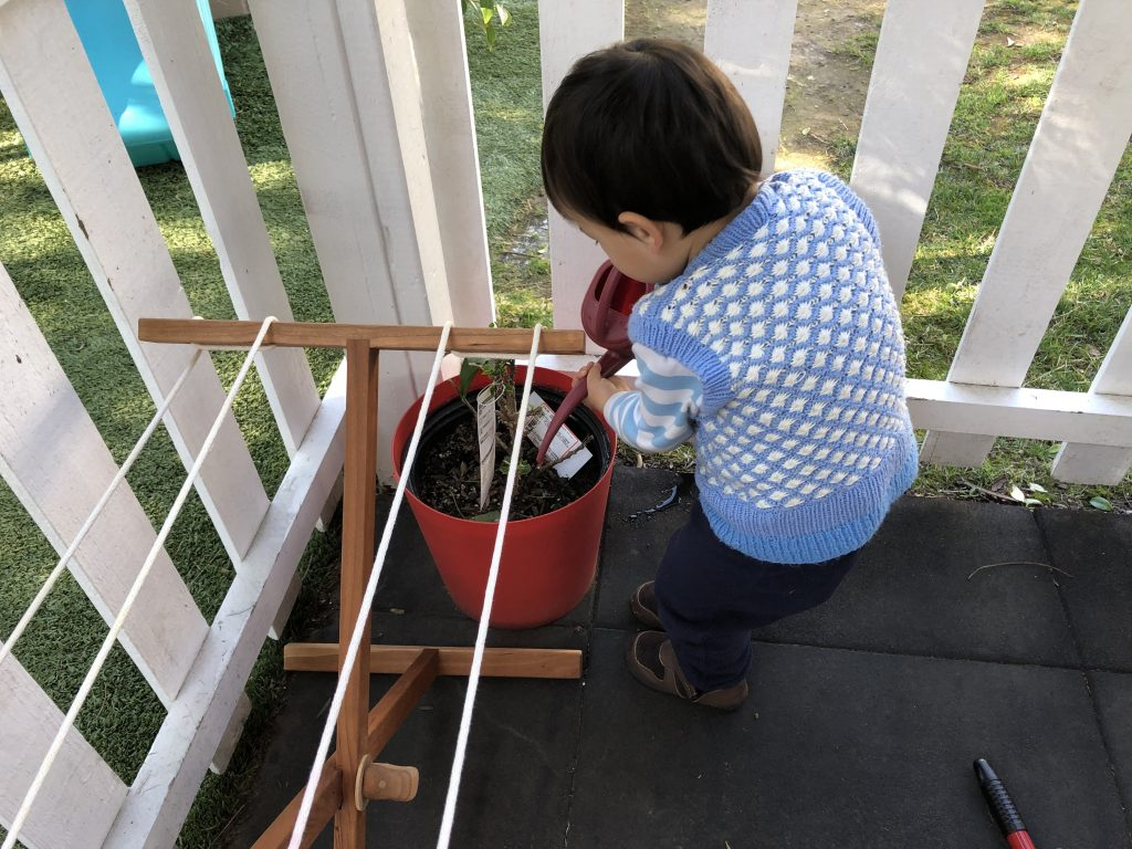 Toddler watering a plant