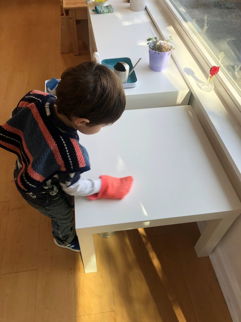 Toddler cleaning independently