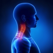 chiropractic neck pain whiplash