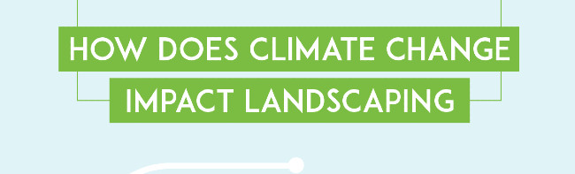Climate Impact On Landscaping