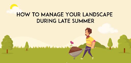 Manage Your Landscape