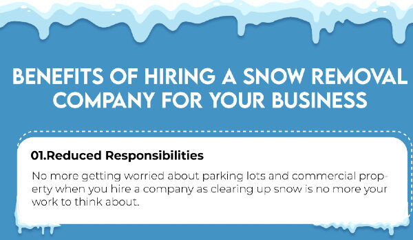 Snow Removal Company