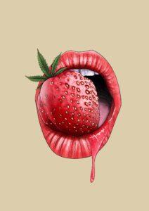 Strawberry Sequoia