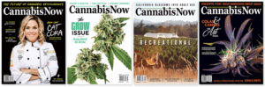 Industry Insights from the CEO of Cannabis Now Magazine