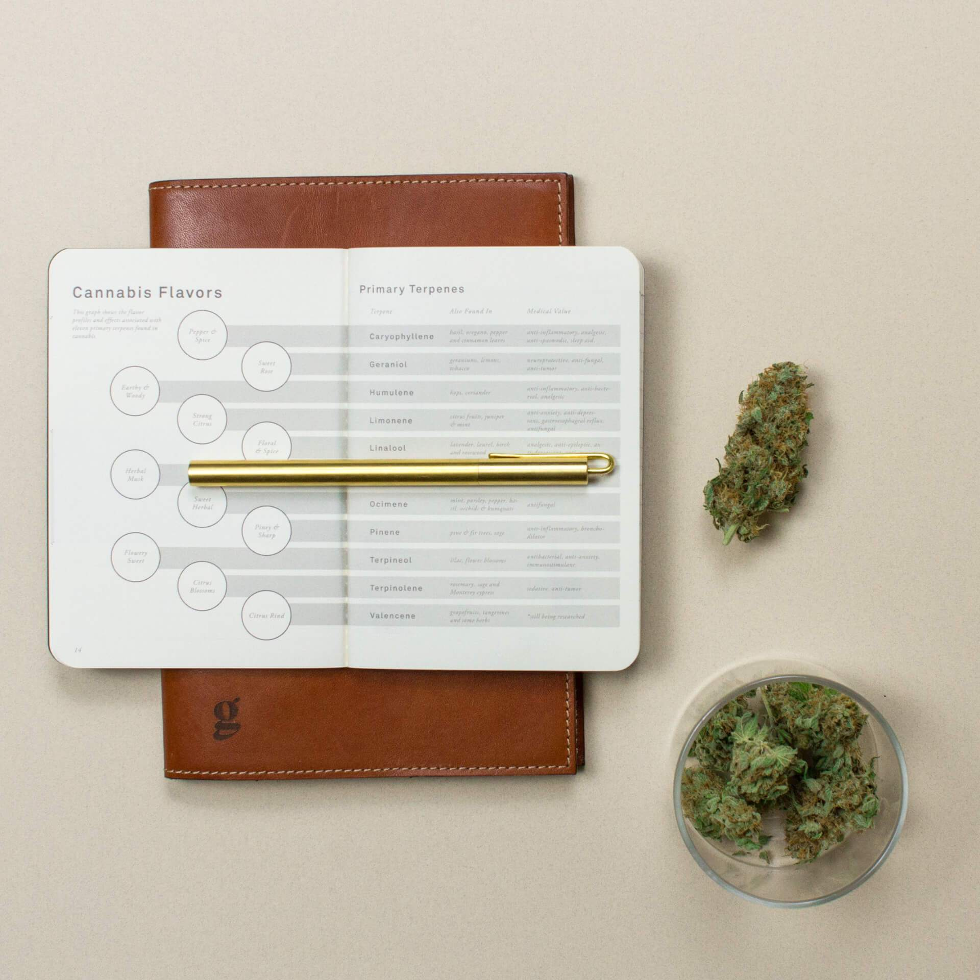 Gold Leaf journal