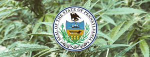 Why Pennsylvania's Marijuana Legalization Bill is Exciting and Progressive