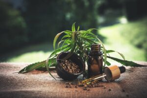 What Is The Difference Between Hemp Seed Oil and Hemp Extract?