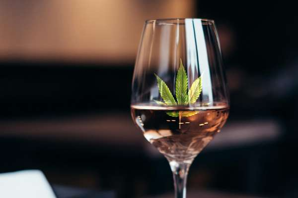 Cannabis Rose