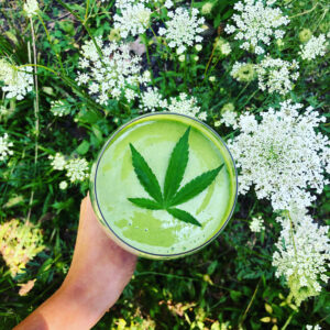 The Benefits of Raw Cannabis in Smoothies and Juices