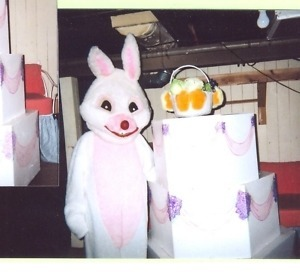 Hire an Easter Bunny for Park District, Library, Easter Egg Hunt or Corporate Event
