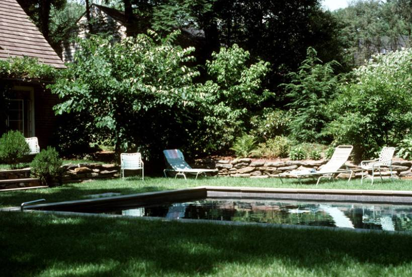 garden-pool-in-lawn-panel
