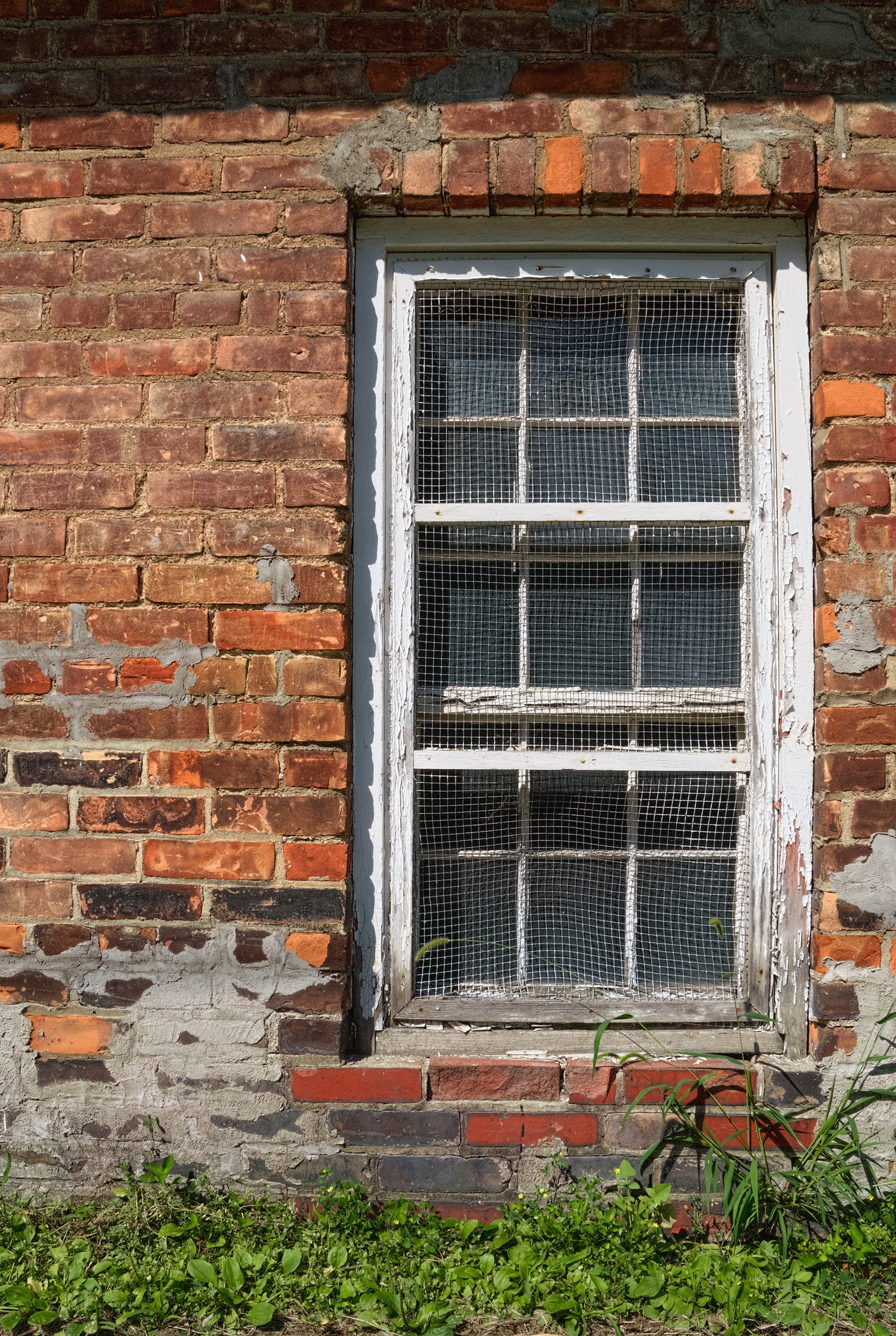 Reasons To Replace Your Old Worn Out Window Screens