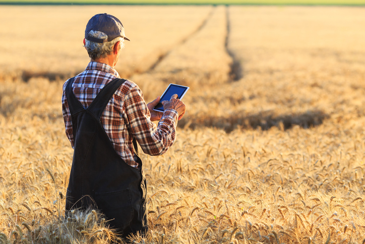 Farmer using a tablet to track productivity