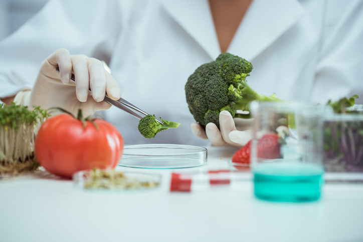 Researcher testing food in lab