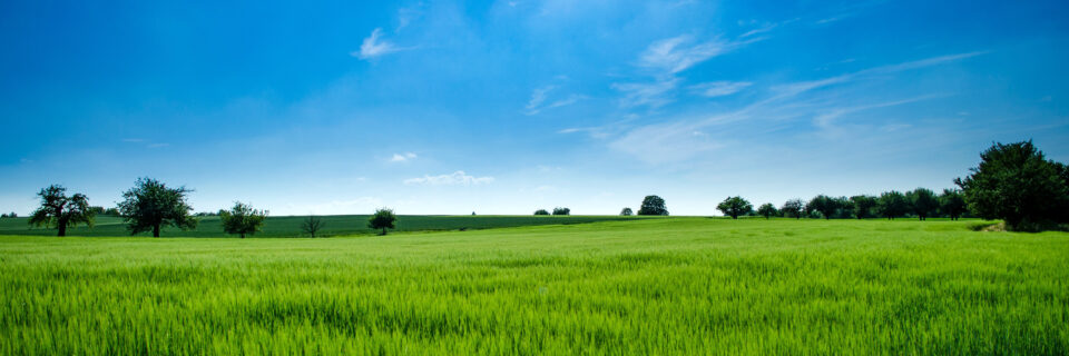 agriculture-bright-clouds-440731