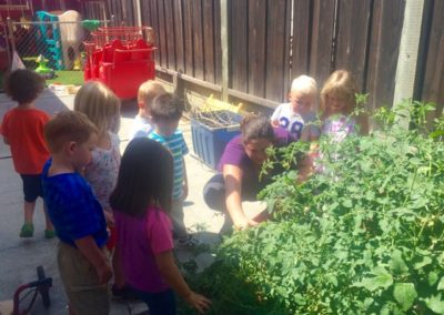 Gardening at Caring Hearts Child Care in Sunnyvale