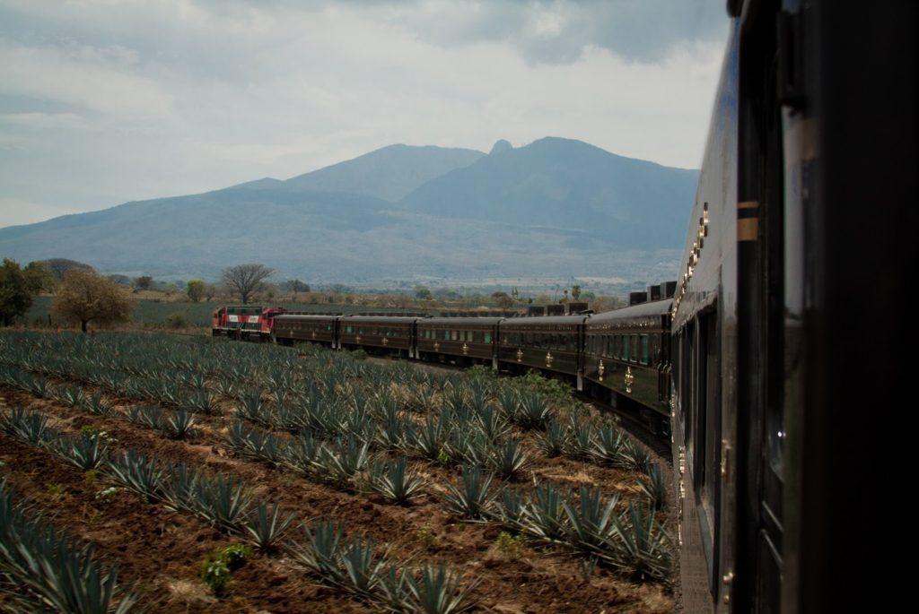 tren Guadalajara Tequila