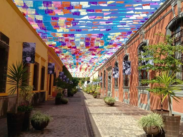 Tequila Jalisco Mexico Turismo