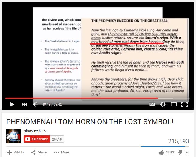 hornvidseal