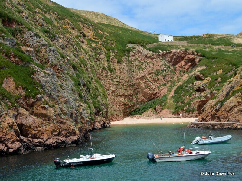 Welcome to Berlenga