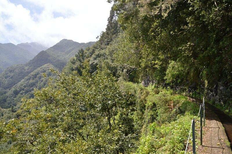Levada do Rei, Madeira walks