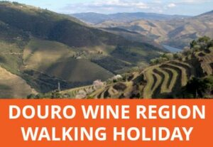 Explore the terraced vineyards and wine producing villages and estates of the Douro wine region on this village to village walking holiday.