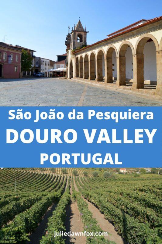 Praca and vineyards. Douro Valley Highlights: São João da Pesqueira & São Salvador do Mundo