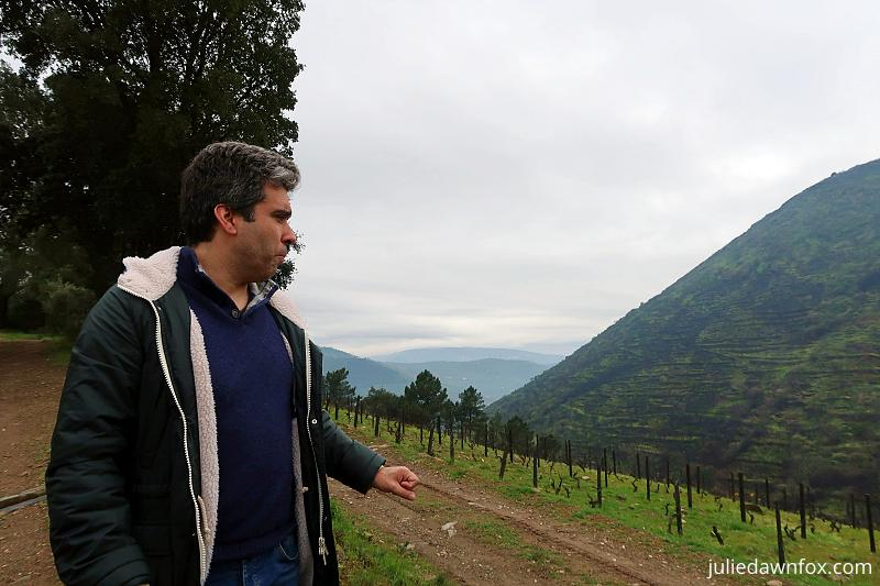 Manuel talking about the organic wine production at Quinta dos Murças
