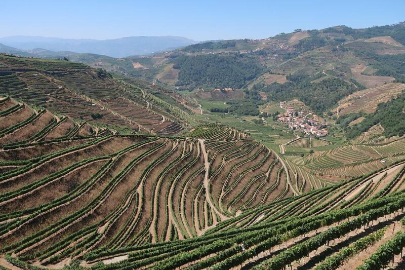 Douro vineyards viewed from the village of Cumieira