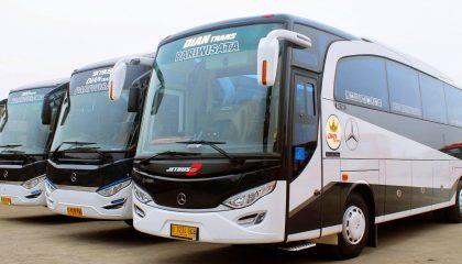 Sewa medium bus pariwisata