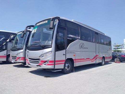 sewa bus white horse