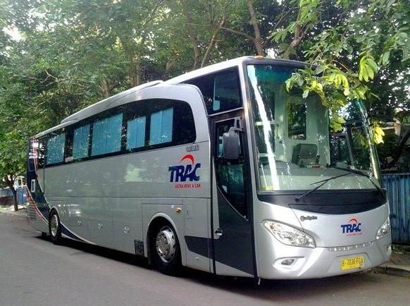 sewa bus pariwisata luxury