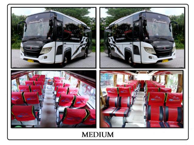 Sewa Medium Bus 24 - 35